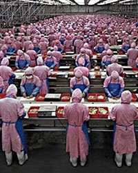 China, Global Labor Standards, and Socially Sustainable Production
