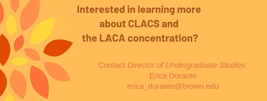 Contact DUS Erica Durante erica_durante@brown.edu if you want to learn more about LACA.