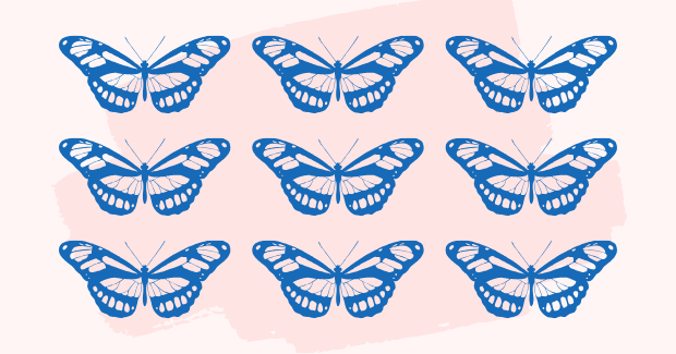 Butterflies, the symbol of migration.