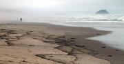 Oil spill on the beach in California