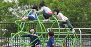 Children with masks climbing on a jungle gym