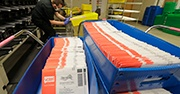 Ballots sit in a plastic box inside a mail room