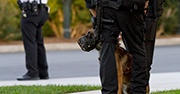 A police dog stands next to an officer