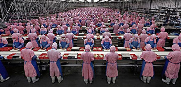 Factory workers in a production line