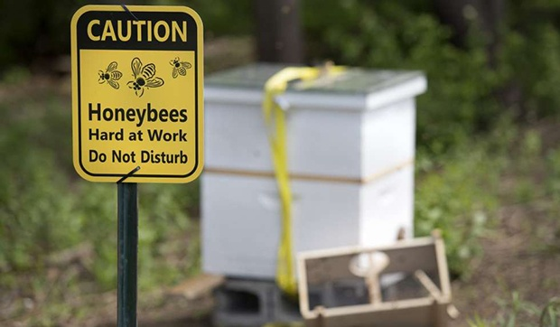 "A Caution Sign Reading, ""Honeybees at work Do not disturb"""
